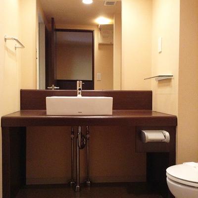 しっかりした洗面台※写真は別部屋