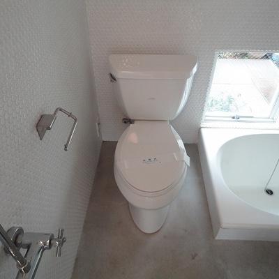 シャワーとバスタブの間にトイレがあります