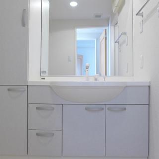 大きな洗面台で使い勝手good!※写真は別部屋です