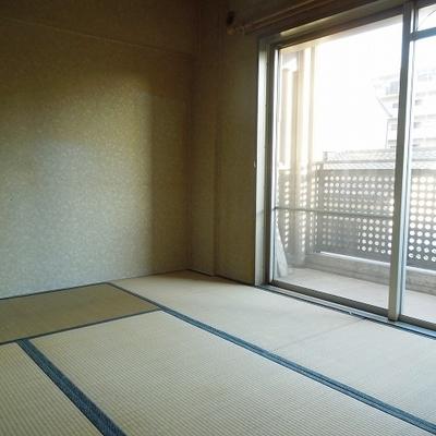 和室は南側で気持ちがいいです