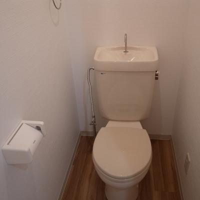 トイレはウォシュレットはついていません。