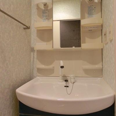 大きな洗面台にシャワーノズル付き!