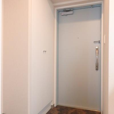 玄関ドアの爽やかなスカイブルーもオススメ