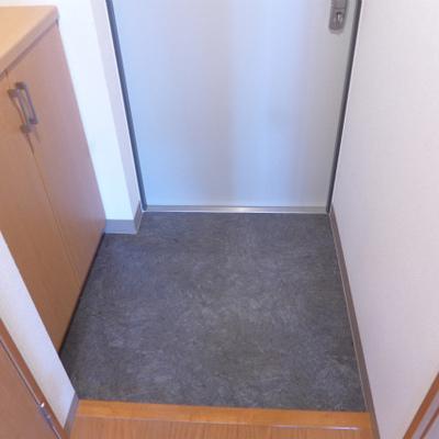 玄関にシューズボックス。広さはふつう。