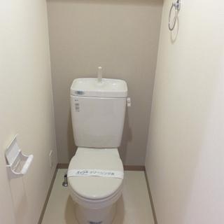 トイレもシンプルですが、それで良いのだ!