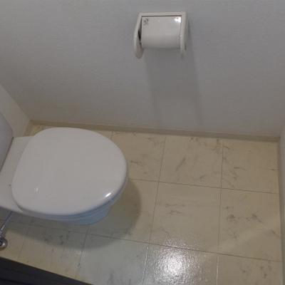 トイレは普通。でも清潔感ばっちり!