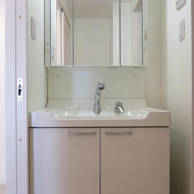 洗面台はよくあるタイプのデザイン
