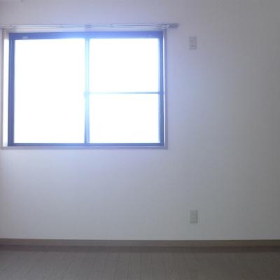 もう一つの洋室にも窓、収納あります!