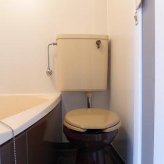バス・トイレ一緒。古めのタイプ。