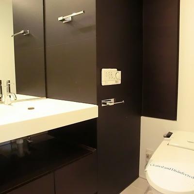洗面とトイレは同室※写真は別部屋です