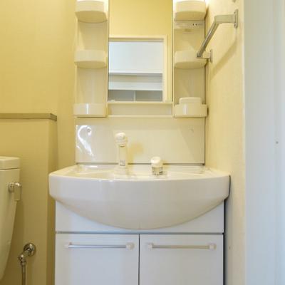 洗面台です。トイレと一緒。