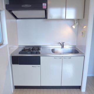 システムキッチンは2口ガスコンロです。