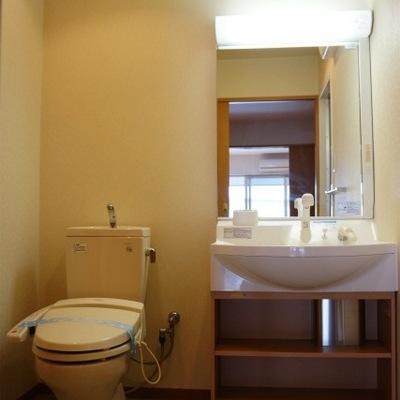 脱衣所に洗面台とトイレがあります