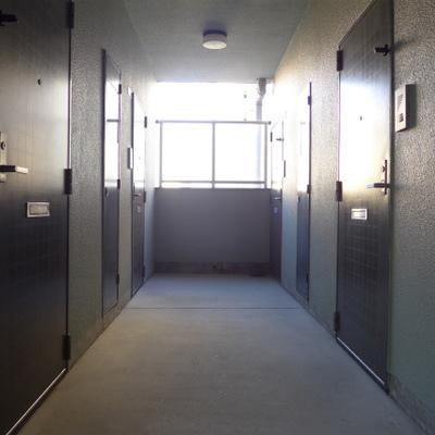 共用部の廊下はこちら。