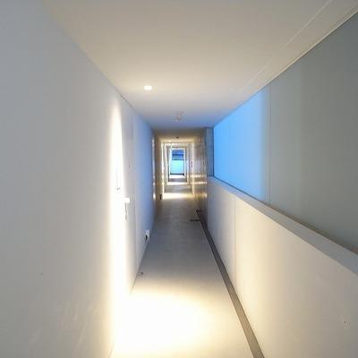 まっすぐな共用廊下。吸い込まれる!