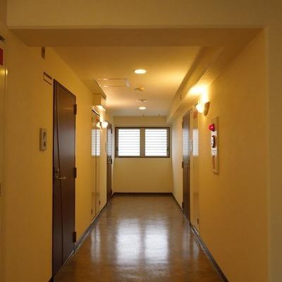 廊下はこんな感じ・・・