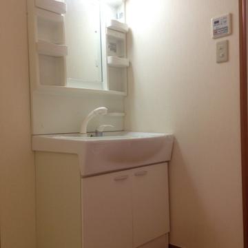 シャンプードレッサー付きの洗面台。