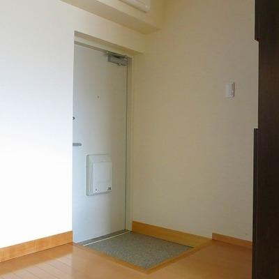 玄関はコンパクトながら、靴箱が設置。