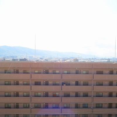 窓からの眺めはこれ!