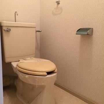 普通のトイレ。