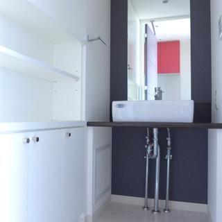 洗面台もシンプルでスタイリッシュ!棚が嬉しい!