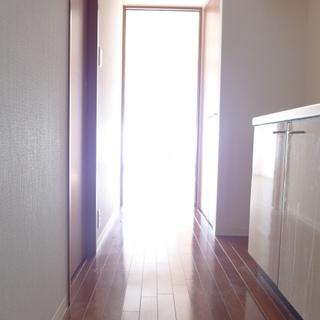 玄関からの眺め。