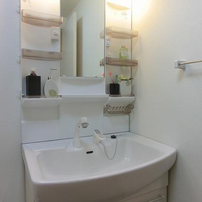 シャワーノズル付の洗面台※画像は別室です
