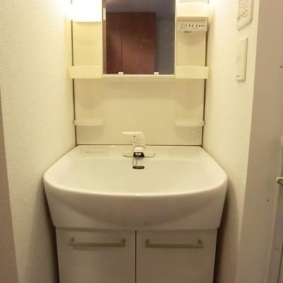 洗面台はこんな感じ。