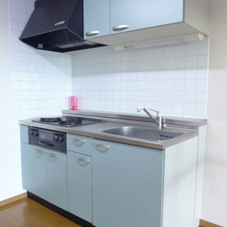 システムキッチンは2口ガスコンロ!