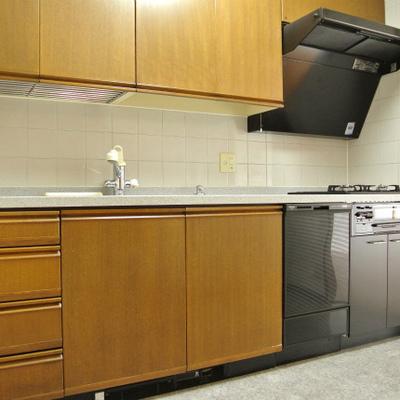 キッチン新調!本格的なグリル付きです
