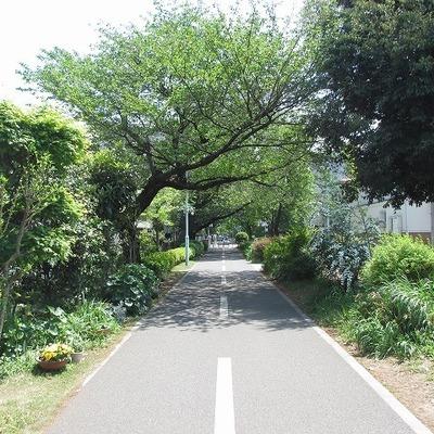 緑道ランウェイ
