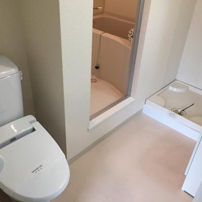 トイレはこちらに。