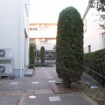 玄関前の共用部は緑が!地面の所々に木材が埋め込まれています。