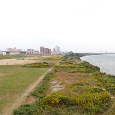 淀川はすぐそば!ランニングに野球、テニスもできちゃいます!