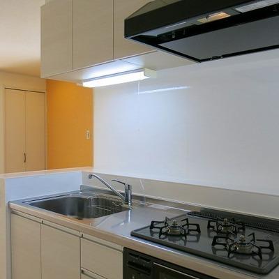 キッチン周りにはまな板や調味料などが置けそうです