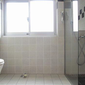 水回りのつながりはこんな感じ。洗濯機もここに置きます。
