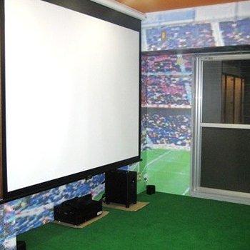 大型スクリーンで楽しむ