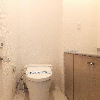 スマートなトイレ。洗面台付です。