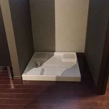 洗面台後ろに室内洗濯機置場があります。