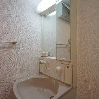 大きめの独立洗面台。シャワーヘッド!