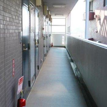 廊下はこんな感じ。