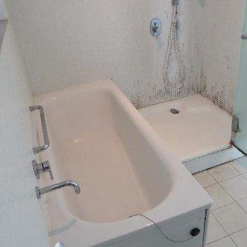 バスタブ+シャワールーム。