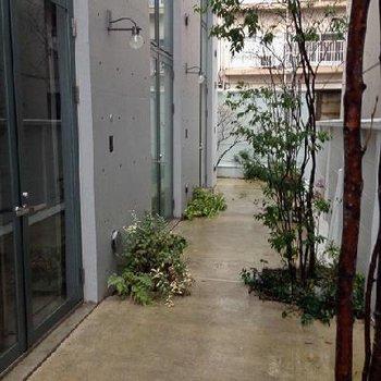 中庭兼通路となる所、ドアに注目。