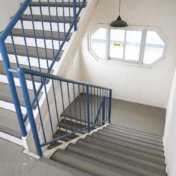 こちらが階段、ゆったりと広さが有りますね。