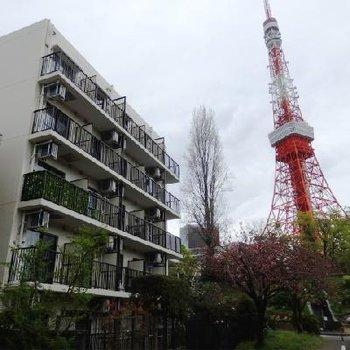 東京タワーがすぐそばに!!!