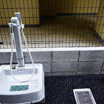 ペットの足洗い場も!