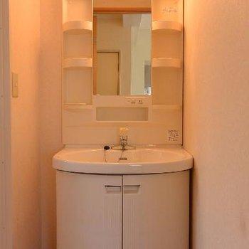 独立洗面台はありがたい。手前が脱衣所です。