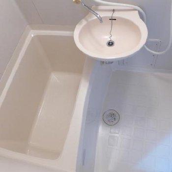 お風呂もコンパクトめ。洗面台付きです。※写真は別部屋