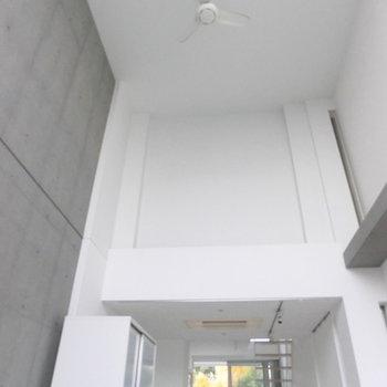天井こんなに高い〜