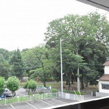 緑が見えていい感じ!※写真は同じ3階の別部屋からの眺望です。